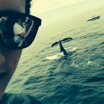 """selfie"" with a whale"