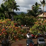 Kuhio Shores overlooking parking area
