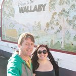 outside at the wallaby