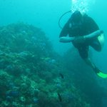 Diving with Eco Divers in Phuket