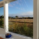 Bilde fra Isles of Scilly Country Guesthouse
