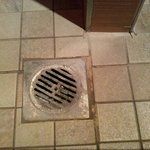 Bathroom drain.
