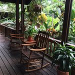 The Lodge at Pico Bonito照片