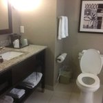 Φωτογραφία: Holiday Inn Express Hotel & Suites Utica