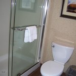 Foto Hilton Garden Inn Watertown/Thousand Islands