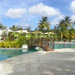 Bilde fra Turtle Beach by Rex Resorts