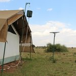 Safari shower!