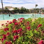 Φωτογραφία: Robinson Club Playa Granada