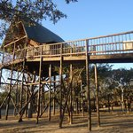 Foto de Bona Ntaba Self Catering Tree House Lodge