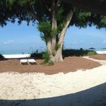 Harrington House Beachfront Bed & Breakfastの写真