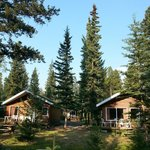 Photo de Pine Bungalows