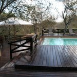 Naledi Bushcamp and Enkoveni Campの写真