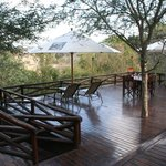 ภาพถ่ายของ Naledi Bushcamp and Enkoveni Camp