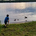 My 10-year-old, making friends with momma & baby ducks, right in front of our cabin.