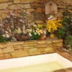 Billede af Mountain Laurel Resort & Spa