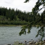 Photo de Denali Grizzly Bear Cabins & Campground