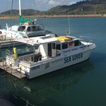 Magnetic Seafaries  Tours