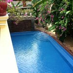 Foto Golden Banana Bed & Breakfast & Superior Hotel