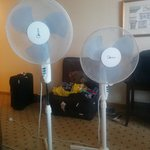 two fans I got as air conditioning