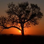 Another sunrise in Kruger Park