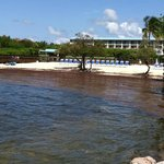 Foto van Ocean Pointe Suites at Key Largo