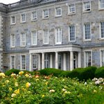 Lovely rose garden in front of Carton House