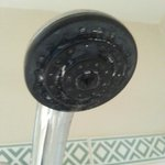 Limescale in showerhead - and that's after guests cleaned it themselves
