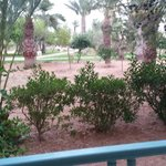 Photo of Yadis Djerba Golf Thalasso & Spa