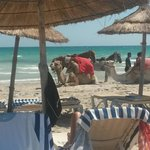Photo de Yadis Djerba Golf Thalasso & Spa