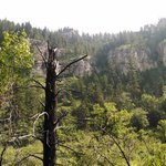 Spearfish Canyon Lodge照片