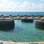 Occidental Grand Xcaret & Royal Club의 사진