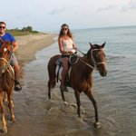 horseback ride (by Nevis Equestrian Center)