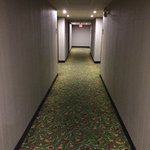 Holiday Inn Express Toronto - North York Foto