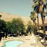 Φωτογραφία: The Monroe Palm Springs