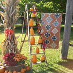 Fabulous Fall at Prairie Path
