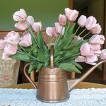 "tulips in watering can ""vase"" in better light"