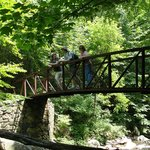 Bridge over creek on hike