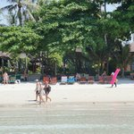 Photo de Baan Chaweng Beach Resort & Spa