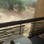 Photo de Kapama River Lodge