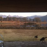 Foto di Lake Naverone Holiday Cottages