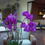 ภาพถ่ายของ Portola Hotel & Spa at Monterey Bay