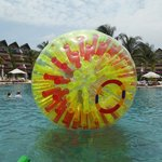 "The giant ""hamster ball"" at the pool for the kids to play in"