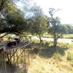 Lion Sands Kruger National Park resmi