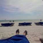 Foto de TradeWinds Island Grand Beach Resort