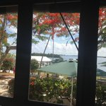 Cabbage Key Inn and Restaurantの写真