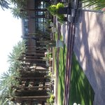 Foto di Hyatt Regency Scottsdale Resort and Spa at Gainey Ranch