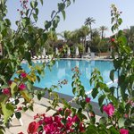 Foto de Pullman Marrakech Palmeraie Resort and Spa