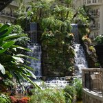 Waterfall in the Garden Conservatory