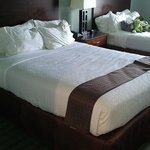 Foto van Holiday Inn Hotel & Suites, Williamsburg-Historic Gateway