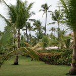 Photo de Majestic Colonial Punta Cana